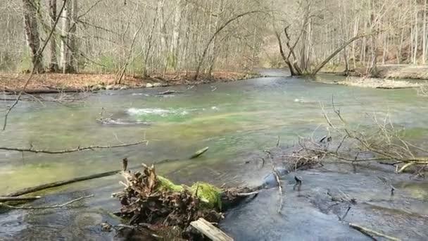 Landschaft der Würm Flusslandschaft im Frühling