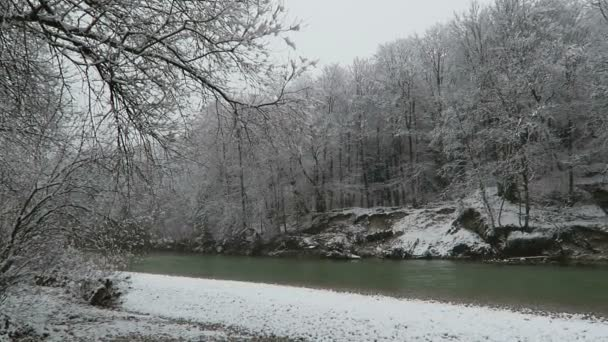 Winter landscape at Isar river. snowing. located next to Pullach (Bavaria, Germany)