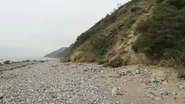 fossil seeking on beach of Hiddensee (Germany)