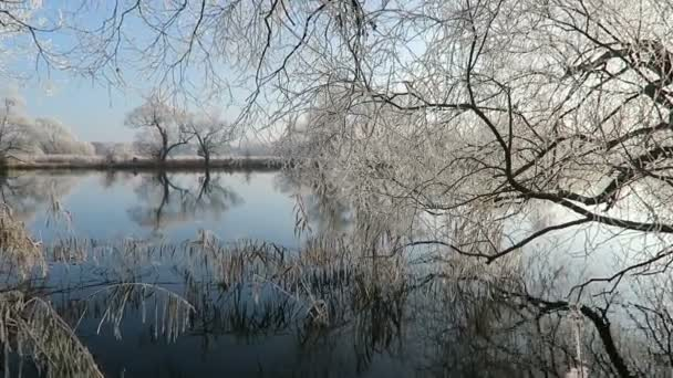 rime frost landscape at Havel river (Havelland, Brandenburg - Germany).