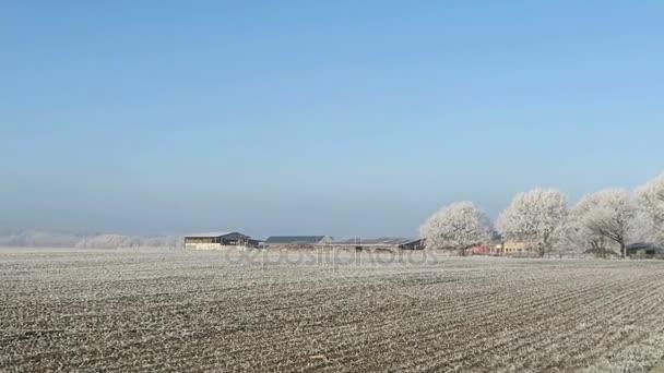rime frost landscape at Havel river (Brandenburg - Germany).