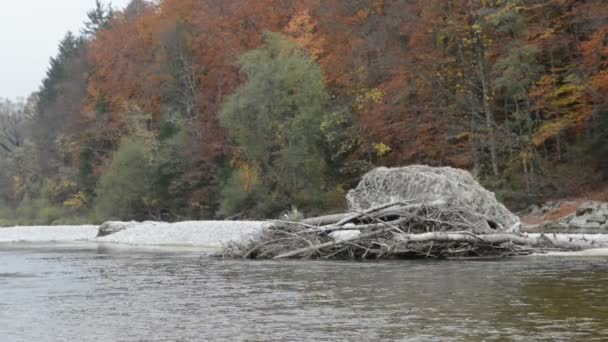 Autumn landscape of Isar river next to Pullach in Bavaria. Near Munich. (Germany)