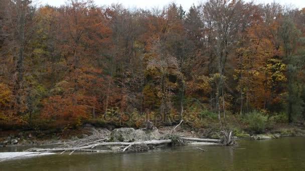 Herbstlandschaft der Isarauen neben Pullach in Bayern. In der Nähe von München. (Deutschland)