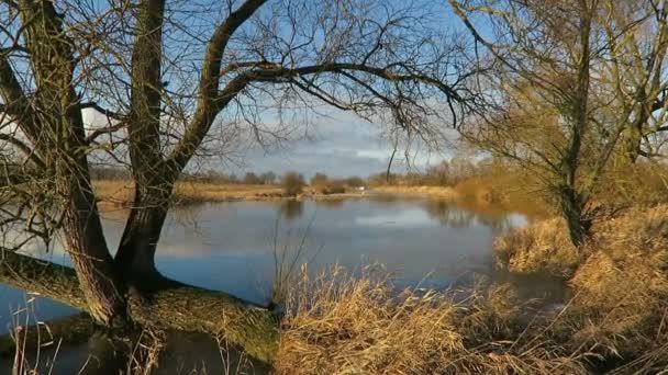 Havel river landscape in winter time. little bit of sun and ice floe around. (Havelland, Germany)