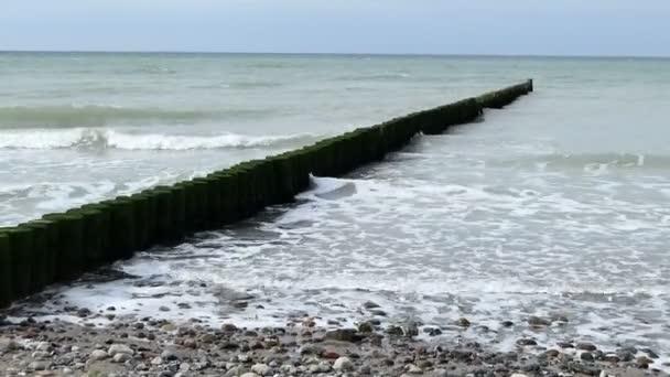 Ostseeküste auf der Halbinsel Darß mit traditionellen hölzernen Groynes entlang. stürmisches Wetter.