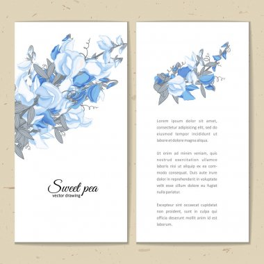 Flowers bouquet - Summer background with Sweet pea