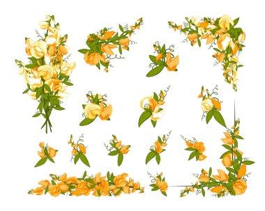 Flowers bouquet - Sweet pea