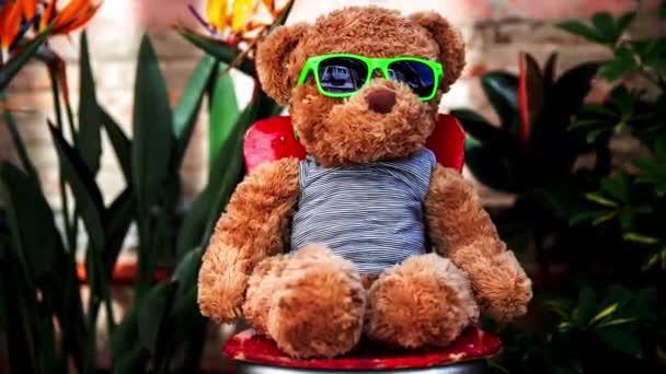 chladný hnědý medvídek nadýchaný hračka v slunečních brýlích sedí na židli na balkóně terasa s rostlinami