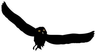Flying owl silhouette illustration