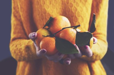 Woman in cozy knitted pullover with fresh clementines in her hands