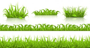 Spring grass icons