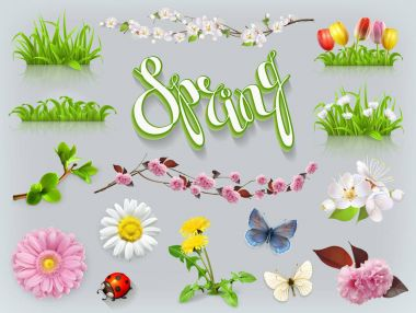 Spring set. Grass and flowers. 3d vector icon