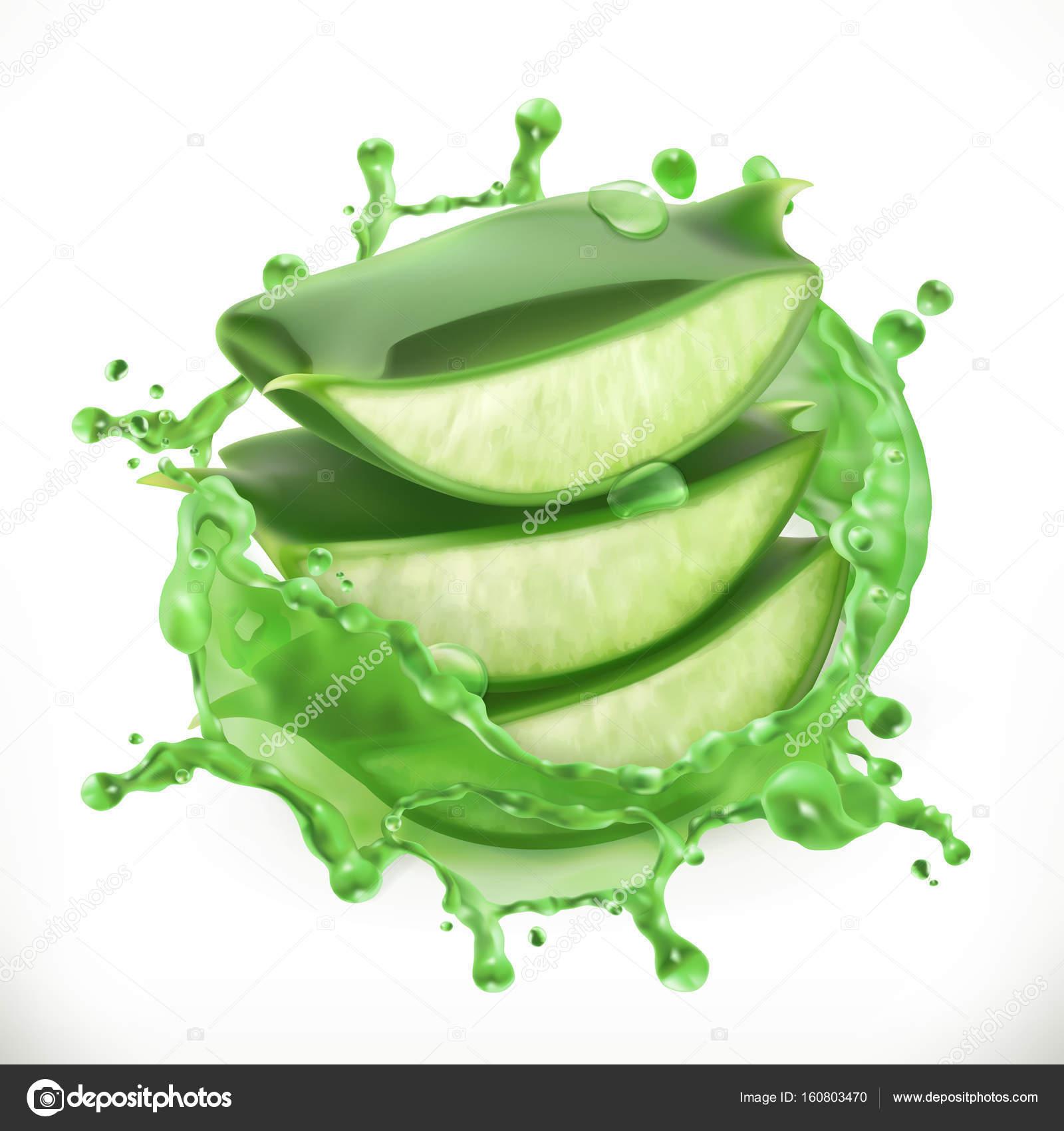 Pieces Of Aloe Vera In Splash Of Juice Stock Vector 169 Natis76 160803470