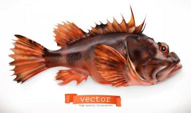 Realistic scorpiofish on white