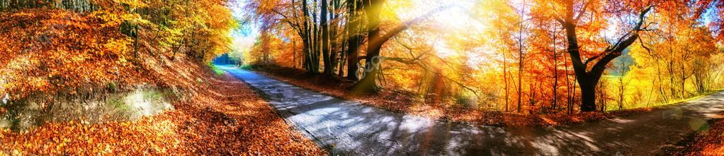 Panoramic autumn landscape with country road