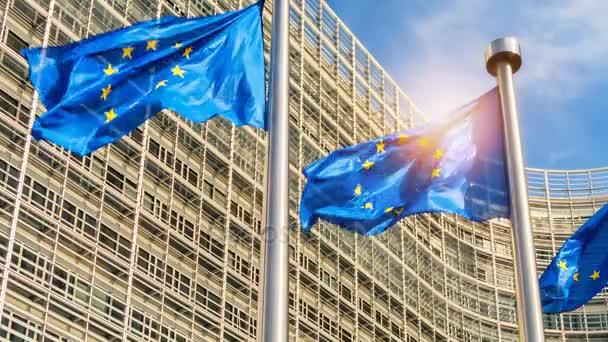 EU members flags