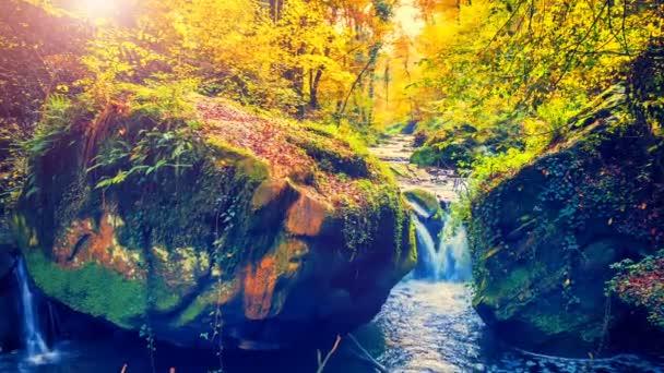 az őszi erdő kis vízesés