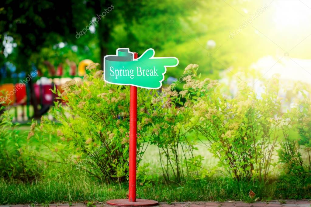 Green signpost with the text spring break written in it, sunny spring day
