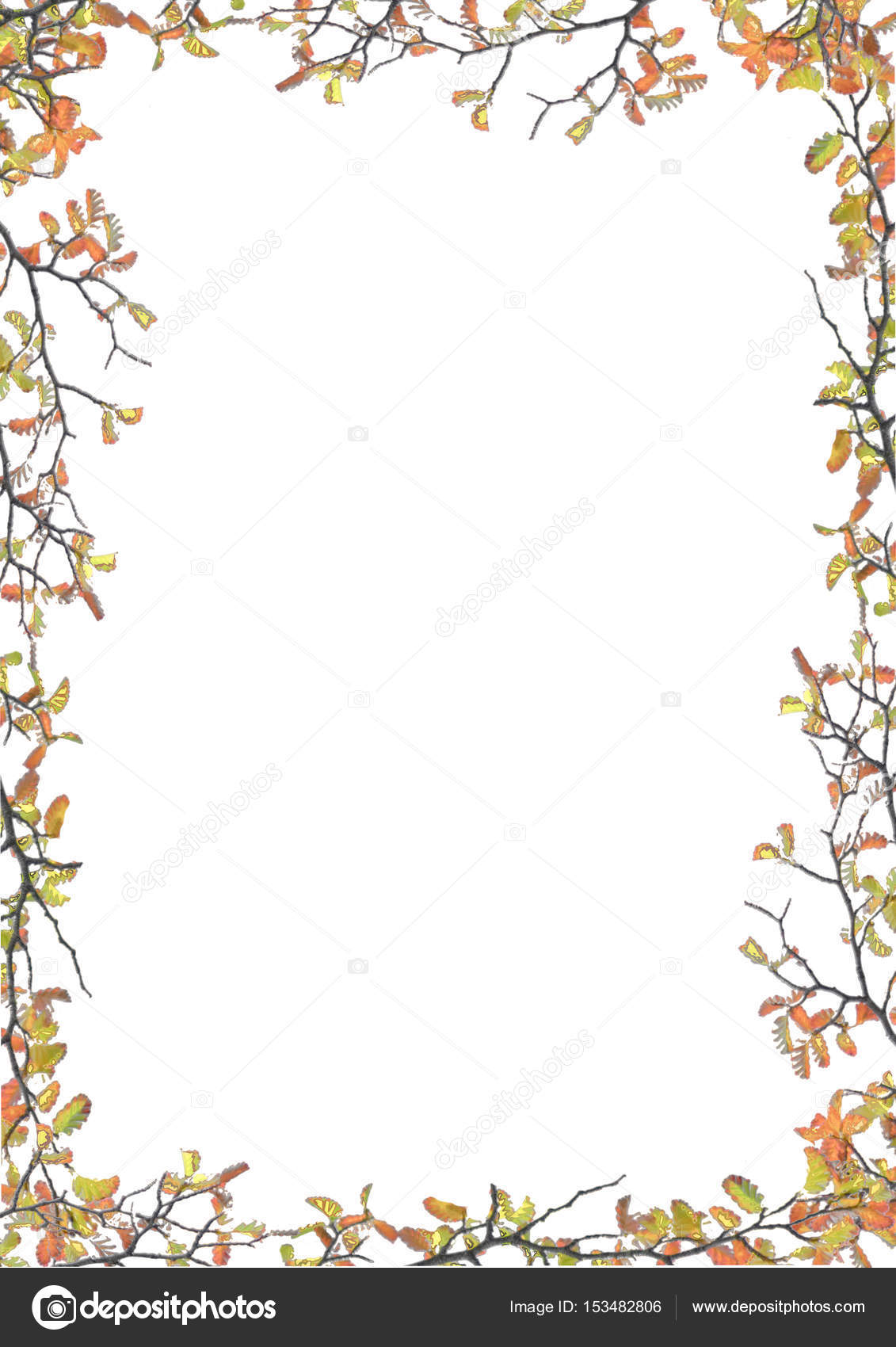 Marco blanco con bordes de flores decoradas — Foto de stock ...
