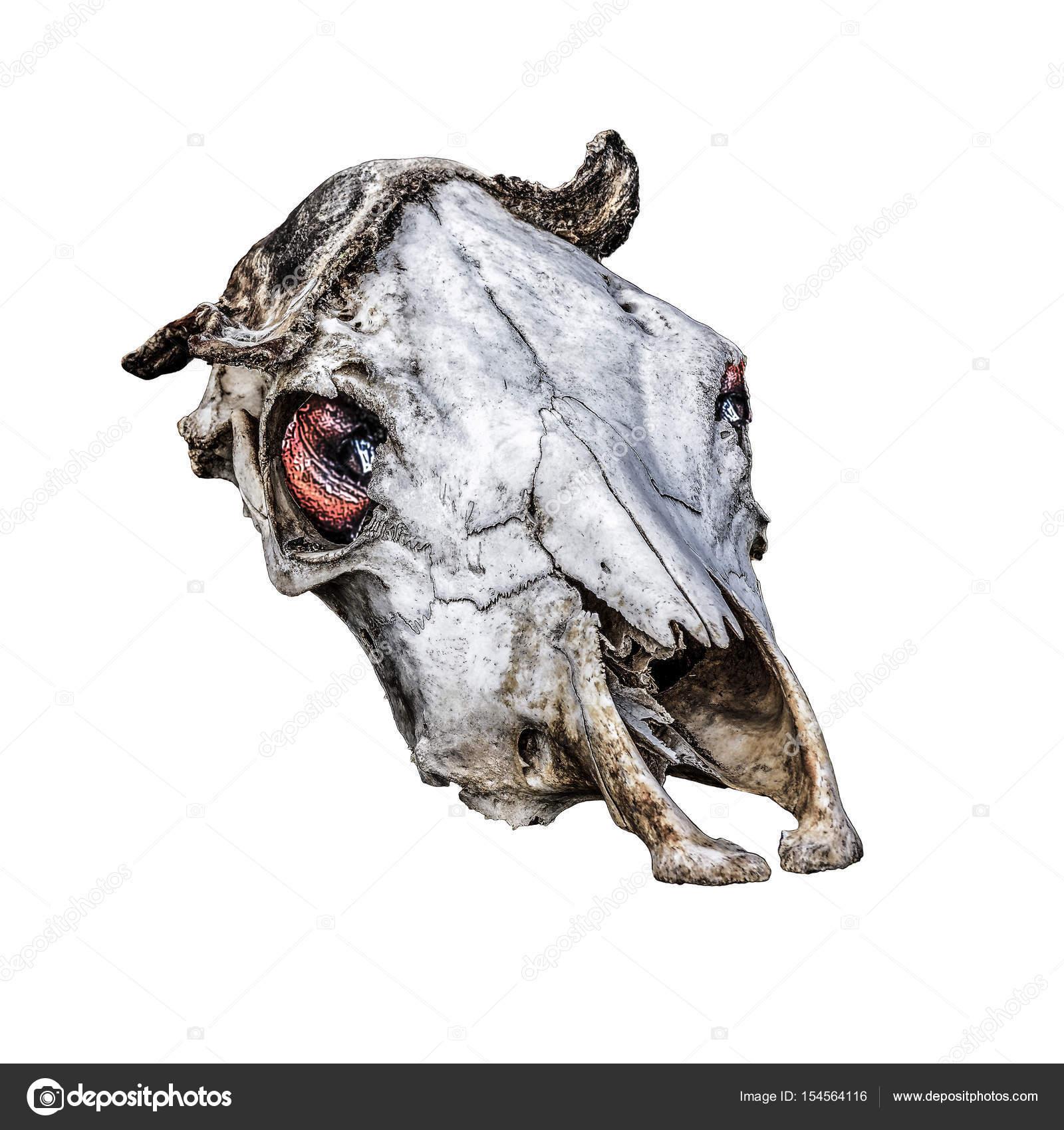 Gruselige Kuh Headbones Kunstwerk — Stockfoto © DanFLCreativo #154564116