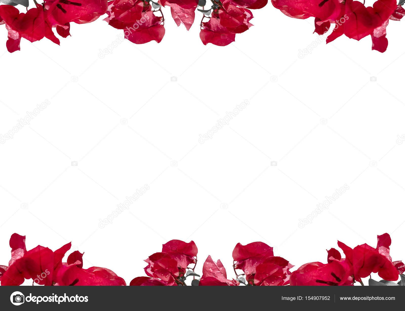 Fondo: Bordes De Flores Rojas
