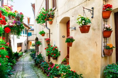 Lovely street decoration with flowers - Spello village in Umbria