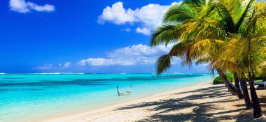 perfect tropical holidays - white sandy beaches of Mauritius island.