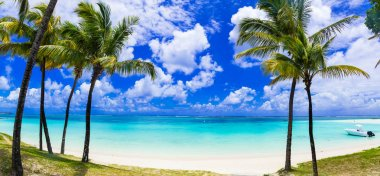 Idyllic tropical scene with palmtrees and turquoise sea. Mauritius.