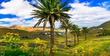 Lanzarote - impressive beauty of volcanic island.