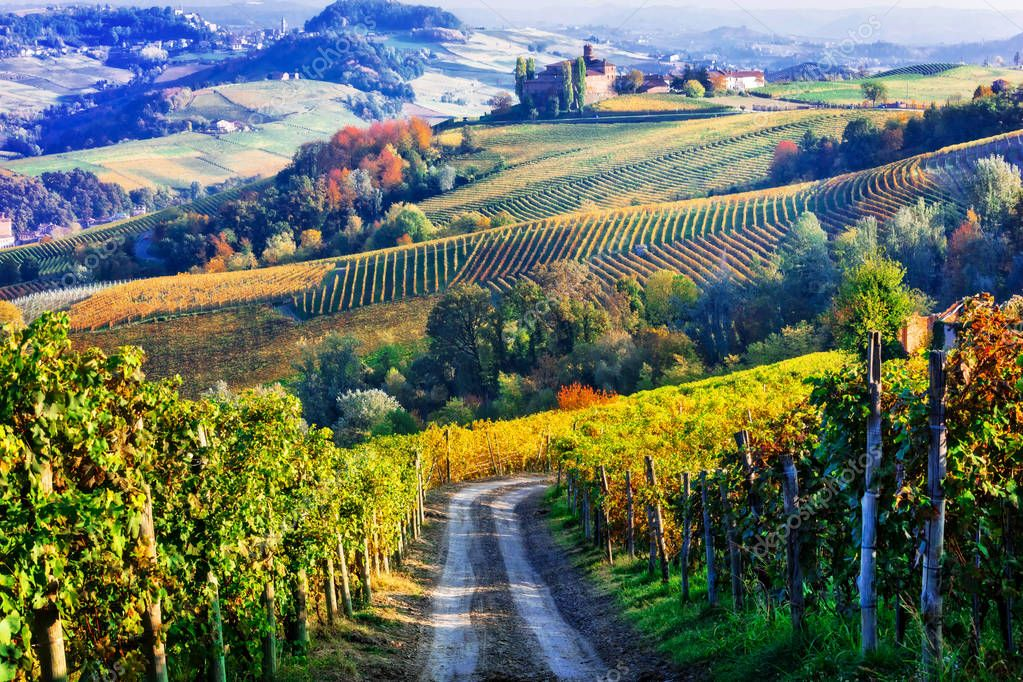 Vineyards and castles of Piemonte in autumn colors. North of Italy.