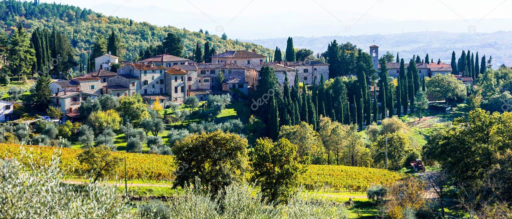 Traditional rural landscapes and villages of Tuscany. Chianti vineyards.
