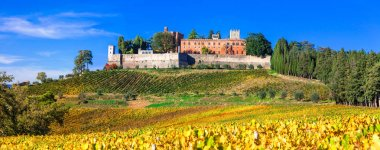 Castles and vineyards of Tuscany, Chianti region,italy.