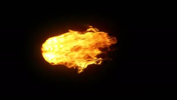Dokonale opakuje pochodeň Oheň / hořící ohně. 4k izolované na černém pozadí s matným.