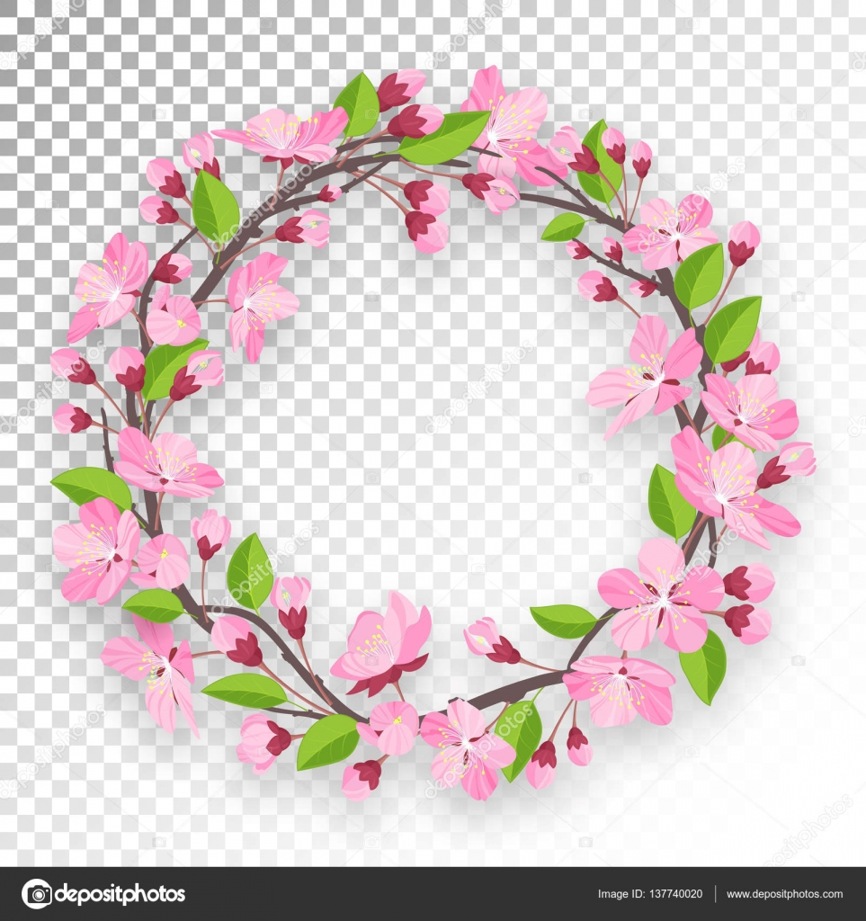 Apple Tree Or Cherry Flowers And Buds Of Branch Are Twisted By Ring Banner Spring Design Isolated On Transparent Background