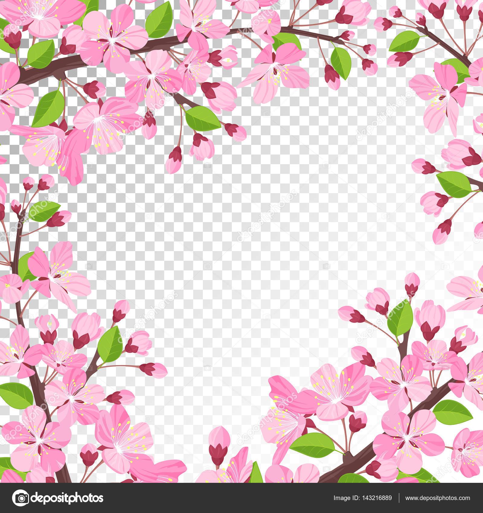 fundo flor cereja vetor de stock
