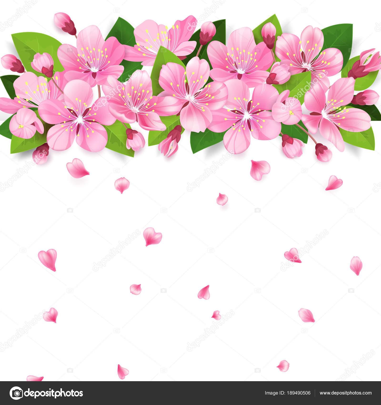 Realistic sakura japan cherry or apple tree branch with blooming realistic sakura japan cherry or apple tree branch with blooming flowers pink flowers border with mightylinksfo