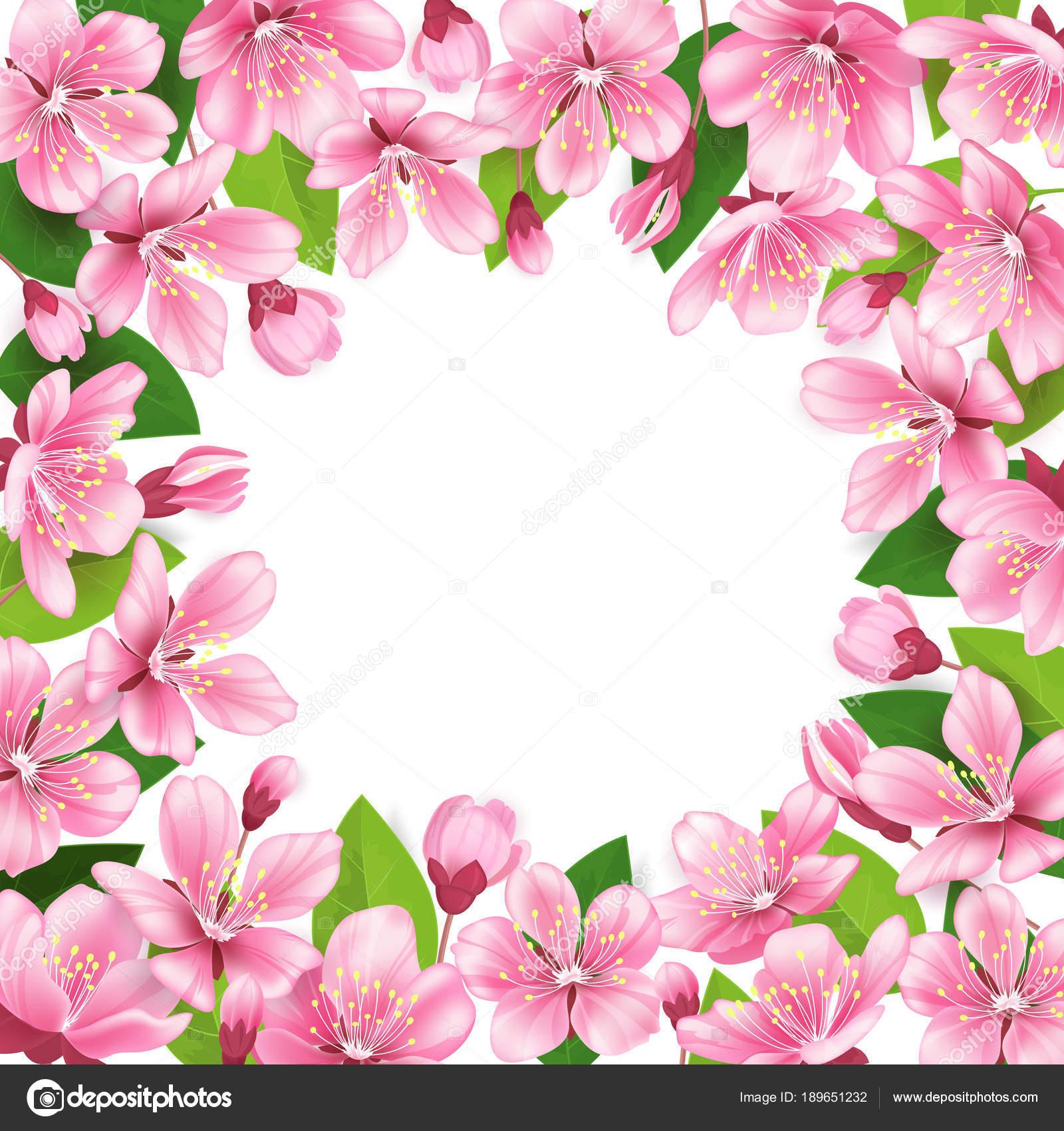 Animado Cerezo Fondo De Cerezos En Flor Marco De Flores De Rosa