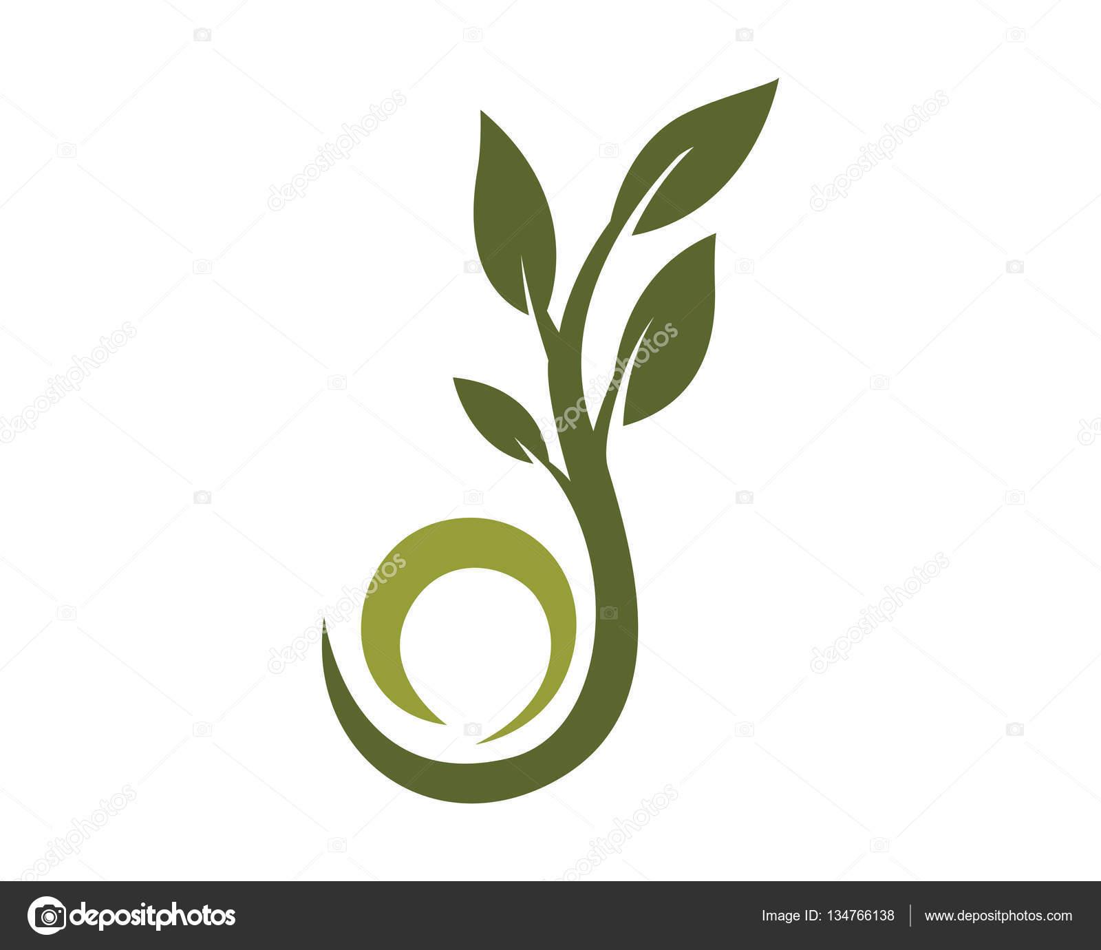 Eco árbol Hoja Logo plantilla — Vector de stock © elaelo #134766138