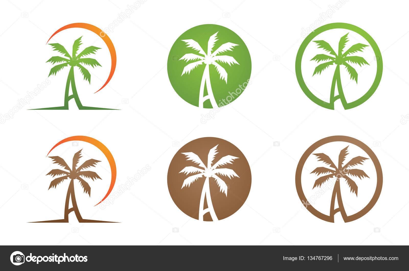 palmera logotipo plantilla � archivo im225genes vectoriales