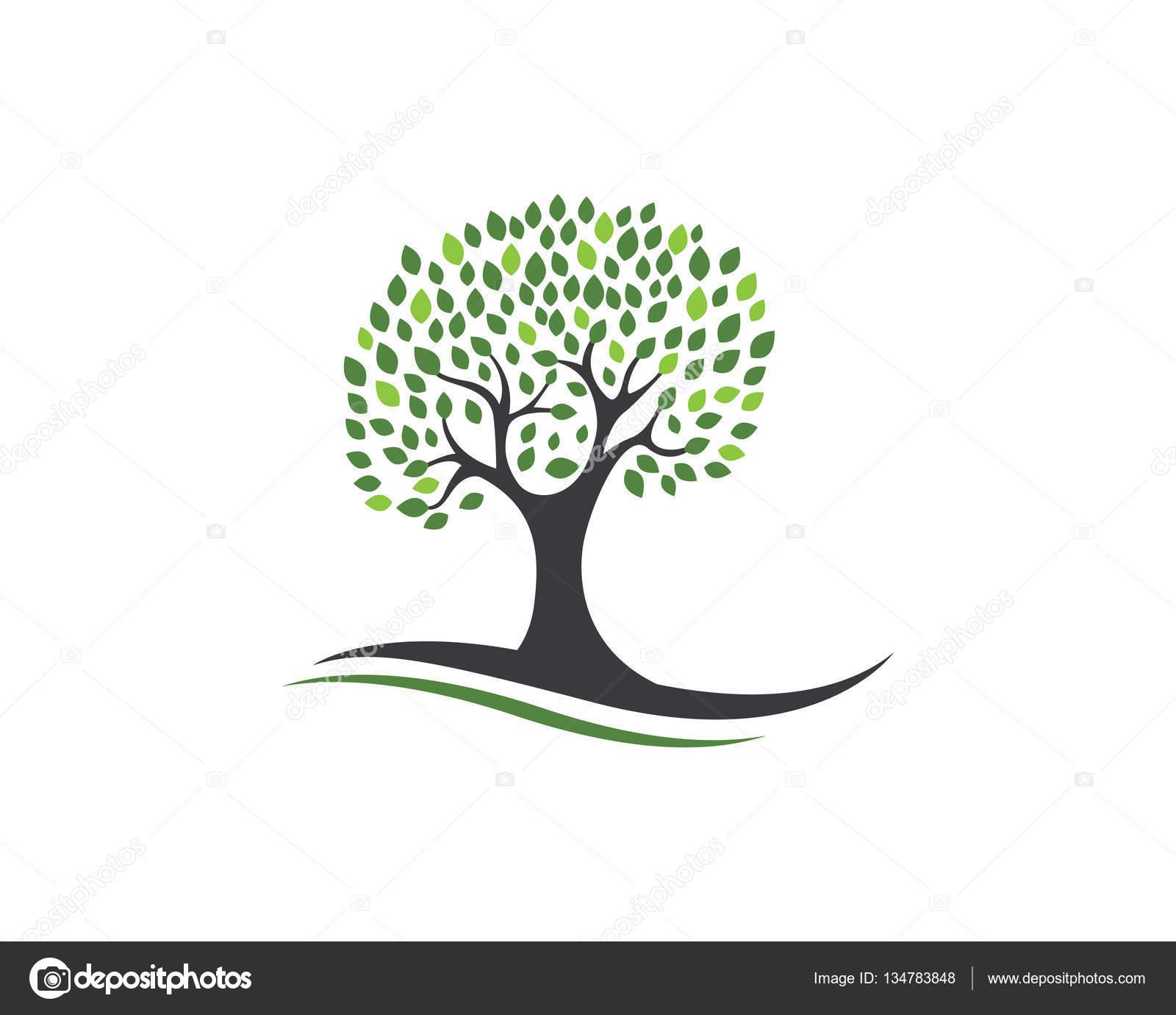 Modello di progettazione di logo di albero genealogico for Progettazione di idee di scantinato