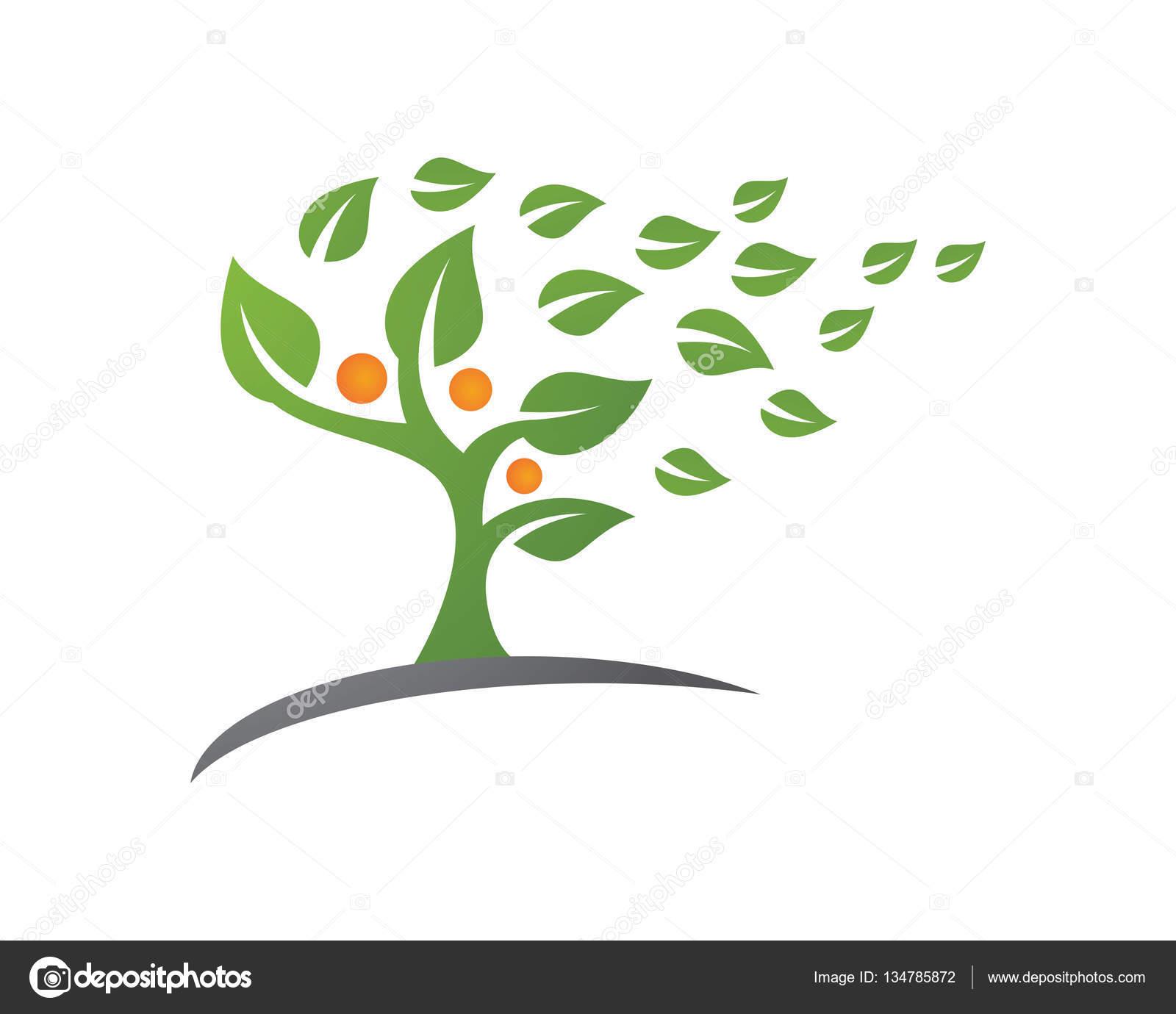 Family Tree Logo Design Template Stock Vector Elaelo 134785872