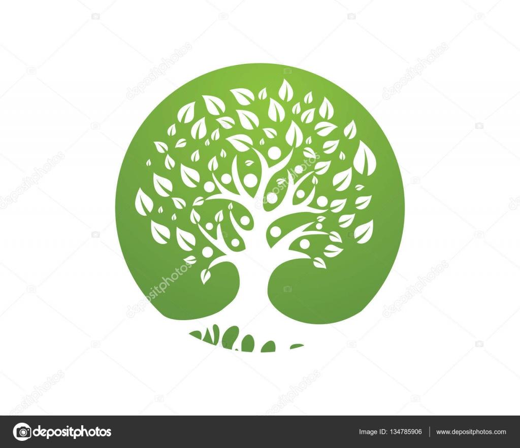 Family Tree Logo Design Template Stock Vector Elaelo 134785906
