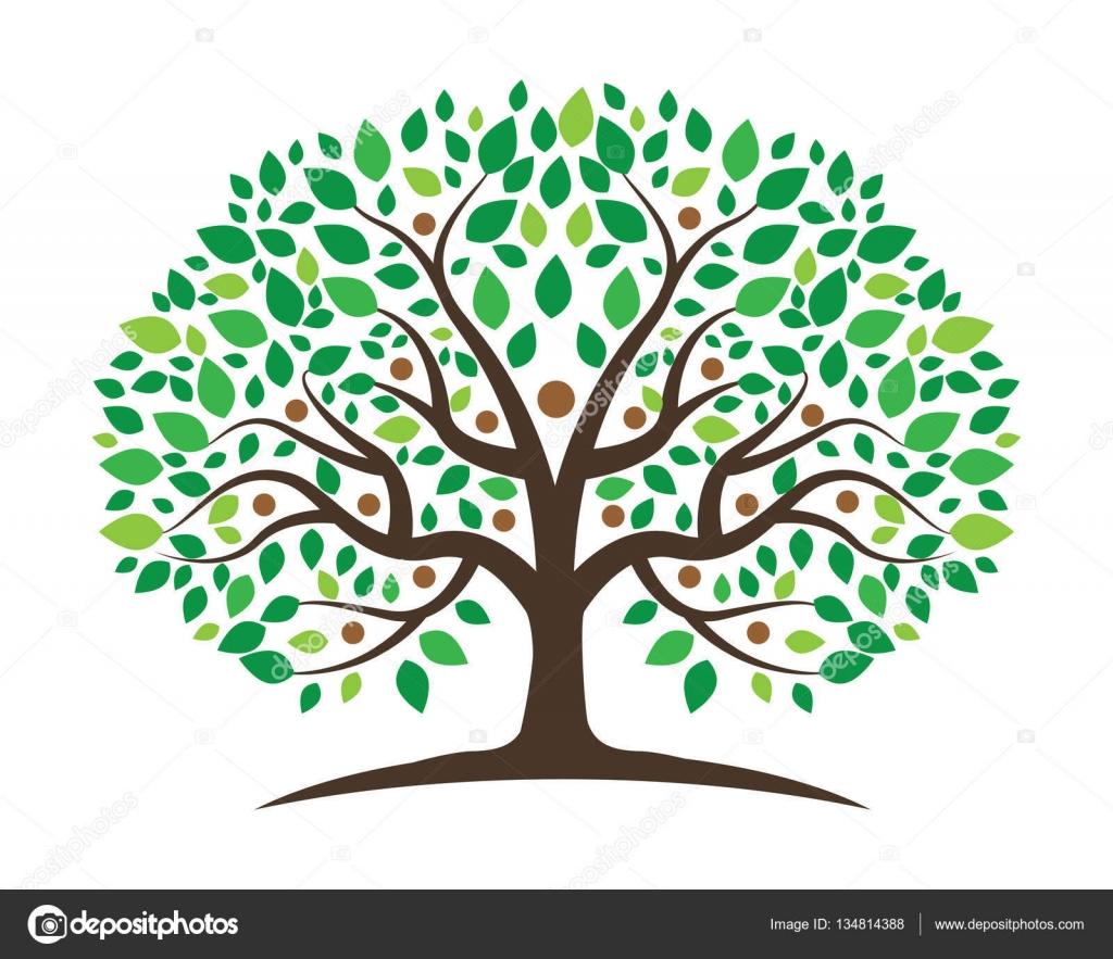 Fotos Arbol Genealógico Plantilla árbol Genealógico Plantilla De