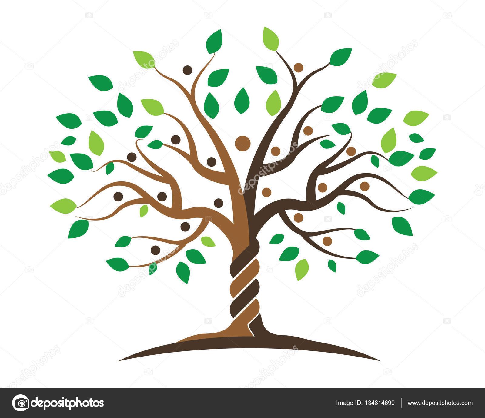 Rbol geneal gico plantilla de dise o de logo vector de - Diseno arbol genealogico ...