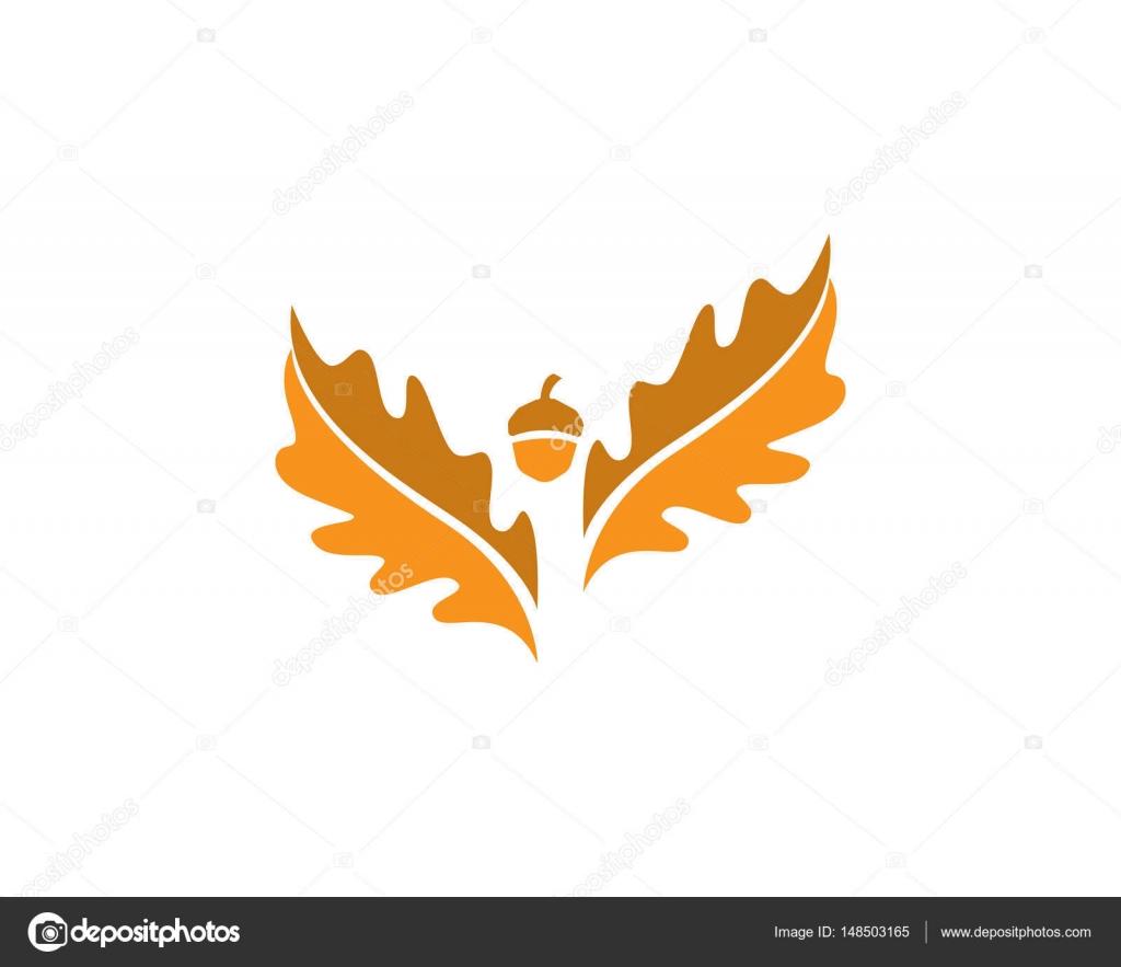 Plantilla de hoja de roble logo y símbolos vectoriales — Vector de ...