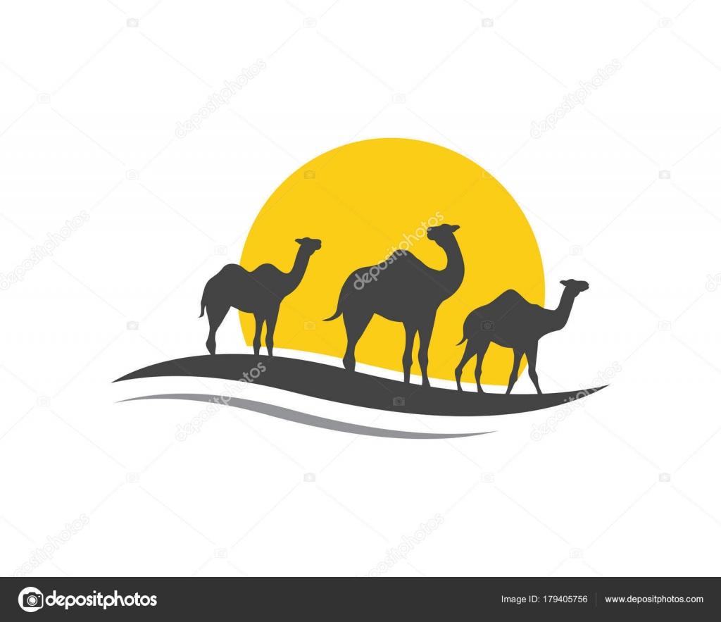 Diseño de plantilla de logotipo icono camello — Vector de stock ...