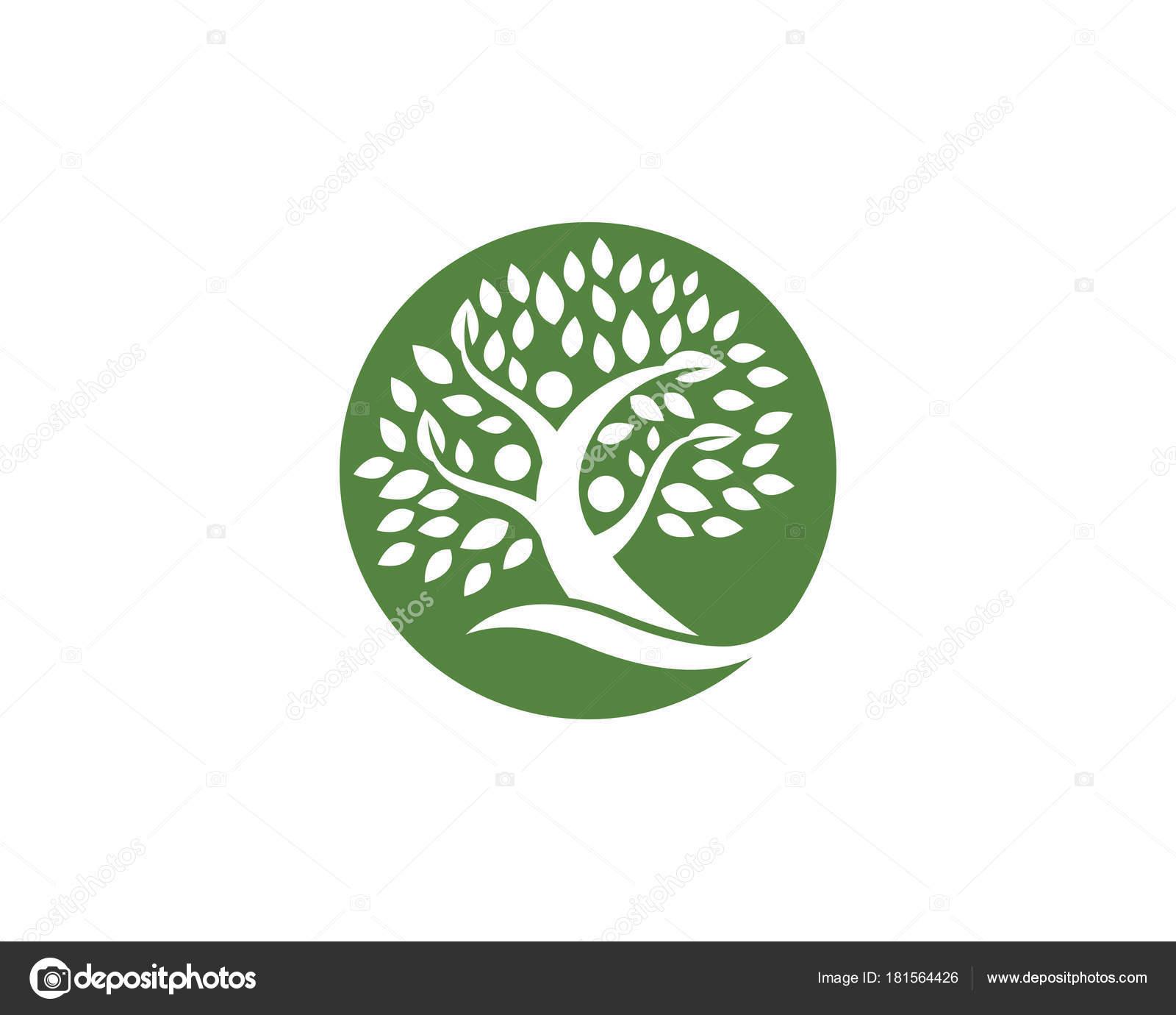 Family Tree Logo Design Template Stock Vector Elaelo 181564426