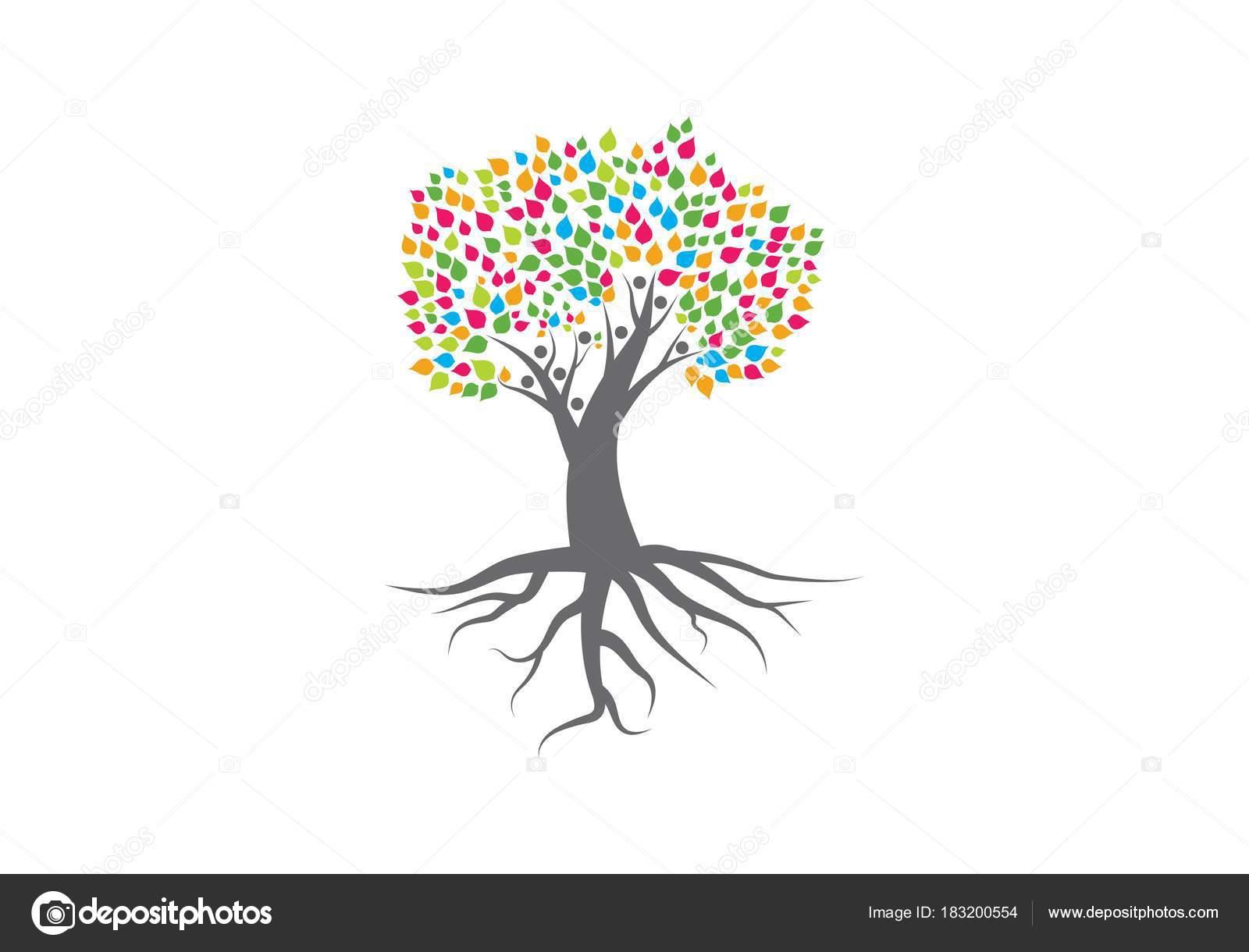 Arboles Genealógicos En Línea Vector Logo De árbol Genealógico