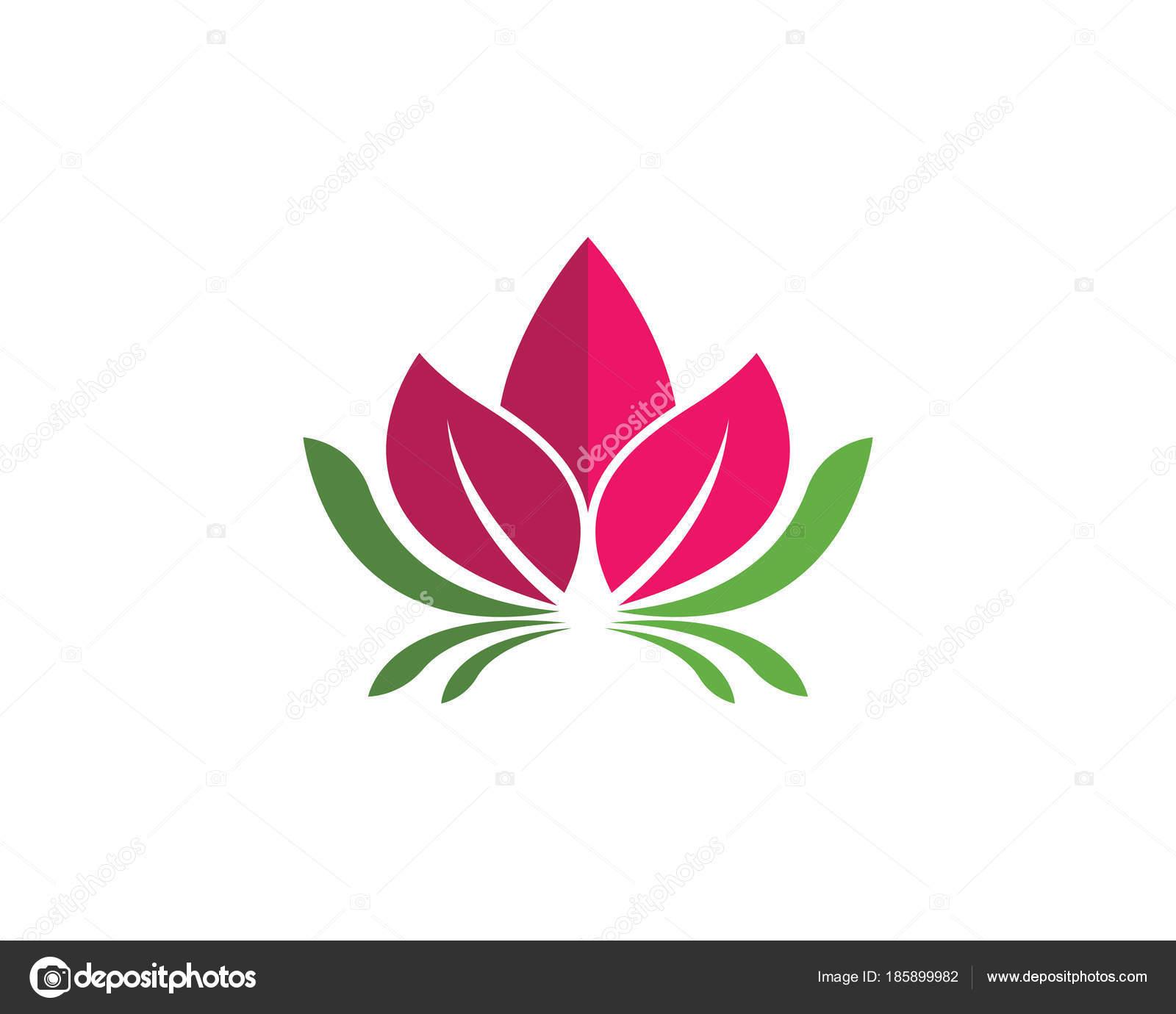 Beauty Vector Lotus Flowers Design Stock Vector Elaelo 185899982
