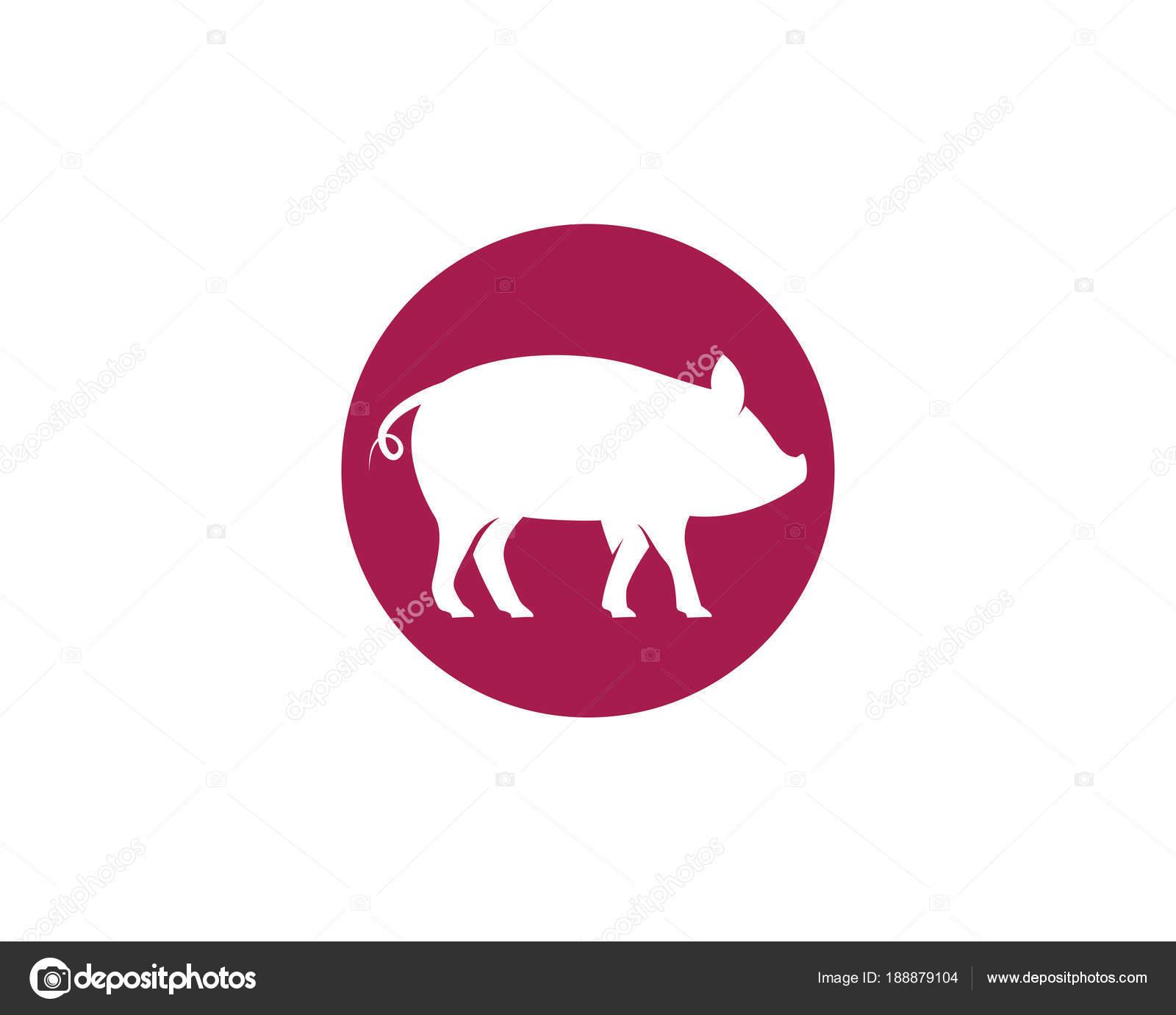 Vector de plantilla de logotipo de cerdo — Archivo Imágenes ...